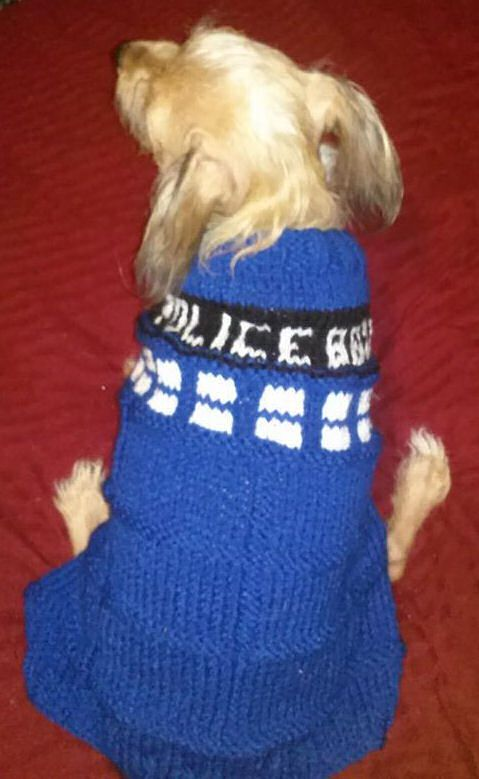 Made this Tardis Sweater for my Bear