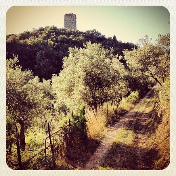 Tra Pievi e Castelli l'escursione di vadoevedo alla scoperta di Ripafratta ed il suo sistema difensivo medievale