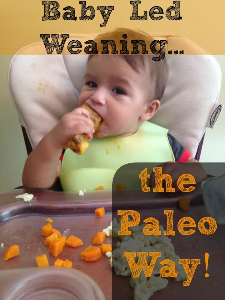 Baby Led Weaning the Paleo Way! Easy and lazy way to feed your baby nutritious Paleo foods!