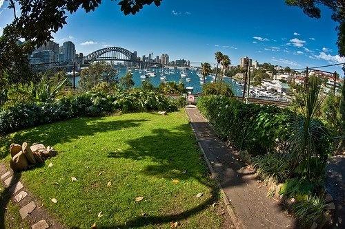 Wendy's secret garden in North Sydney - what a beautiful secret