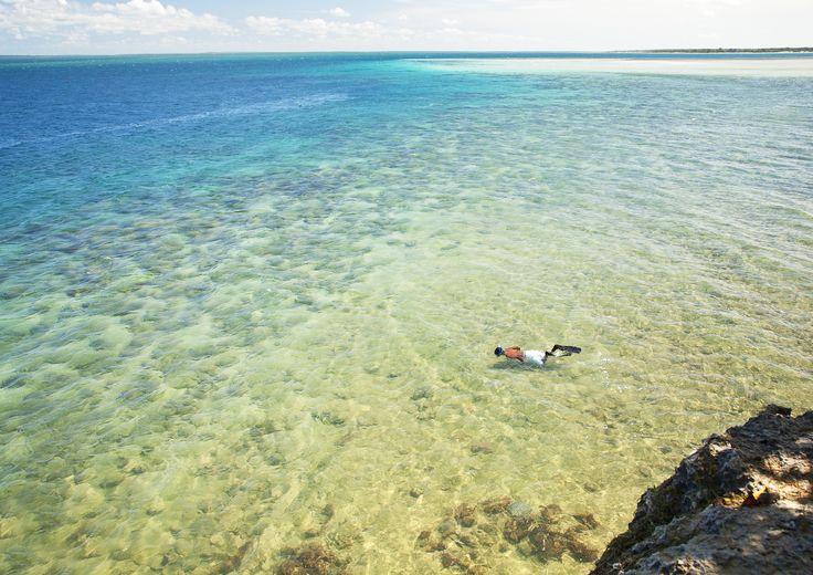 Azura Quilalea snorkelling right off the island.
