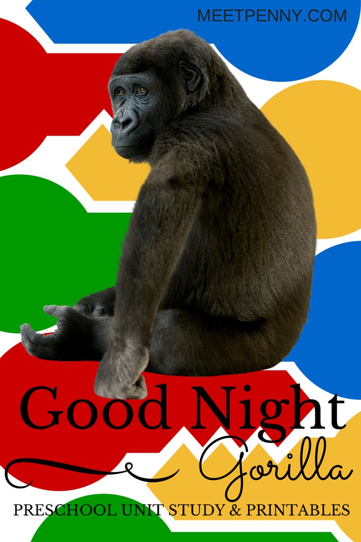 Good Night Gorilla Preschool Unit Study Ideas