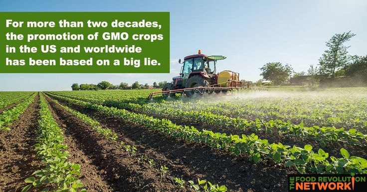 """The Truth About Monsanto You Need to Know 