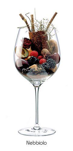 NEBBIOLO - Pruneau, pêche, cerise, figue confite, mûre, framboise, amande, orange, pétale de rose, foin, réglisse, clou de girofle, menthe, baie de genièvre, anis étoilé, poivre noir, caramel, cuir...