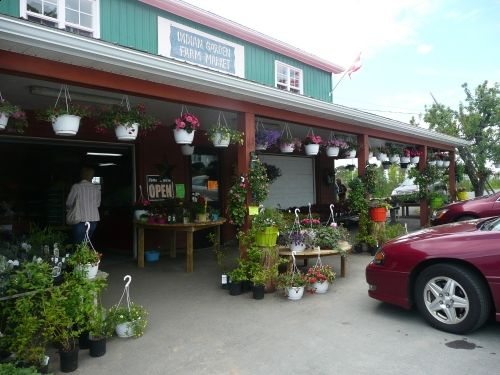 Indian Garden Farm _ my favorite to buy local