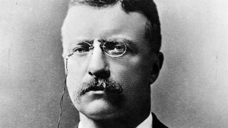 American President A Reference Resource - Theodore Roosevelt Domestic Affairs