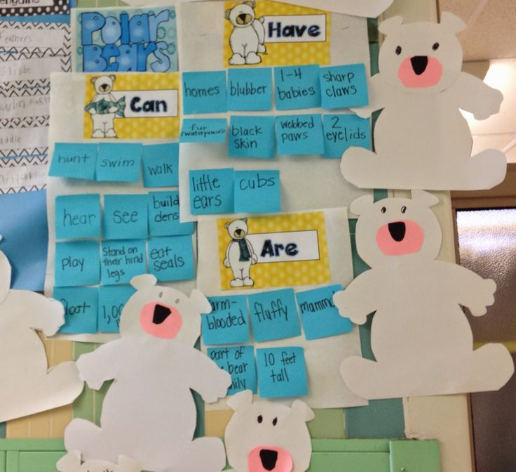 Compare and Contrast Polar Bears and Penguins