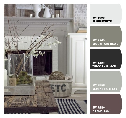 living room. Tie the gray cabinets from kitchen to fireplace. Use that purplish color as accents with brown...again to bring the color flow from kitchen