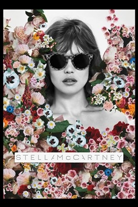 Best Advertising Campaigns 2012   Effective advertising images  (Stella McCartney)