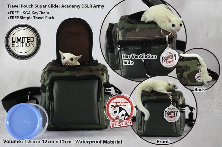 "Sugar Glider Academy Travel Pouch DSLR Go Army . ""How to bring the glider food?"" ""We got this cool Travel Pouch but where do we buy the food?"" . Have you got that kind of question while bought a new bag for your glider? Don't worry! . This High Quality Sugar Glider Academy Travel Pouch has Simple Travel Pack as a bonus suitable for this Travel Pouch front pocket size. Exciting isn't? You don't have to worry again to search for the best-fit container for this Travel Pouch! We will give you…"