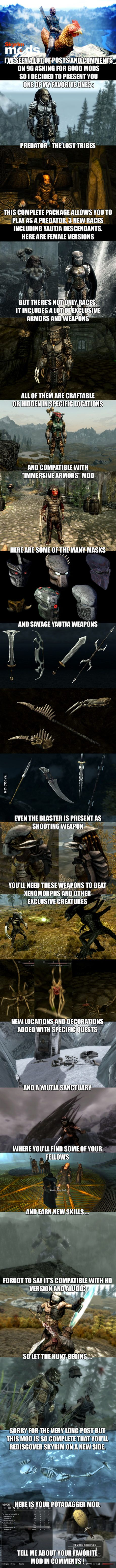 What's your favorite Skyrim mod ?