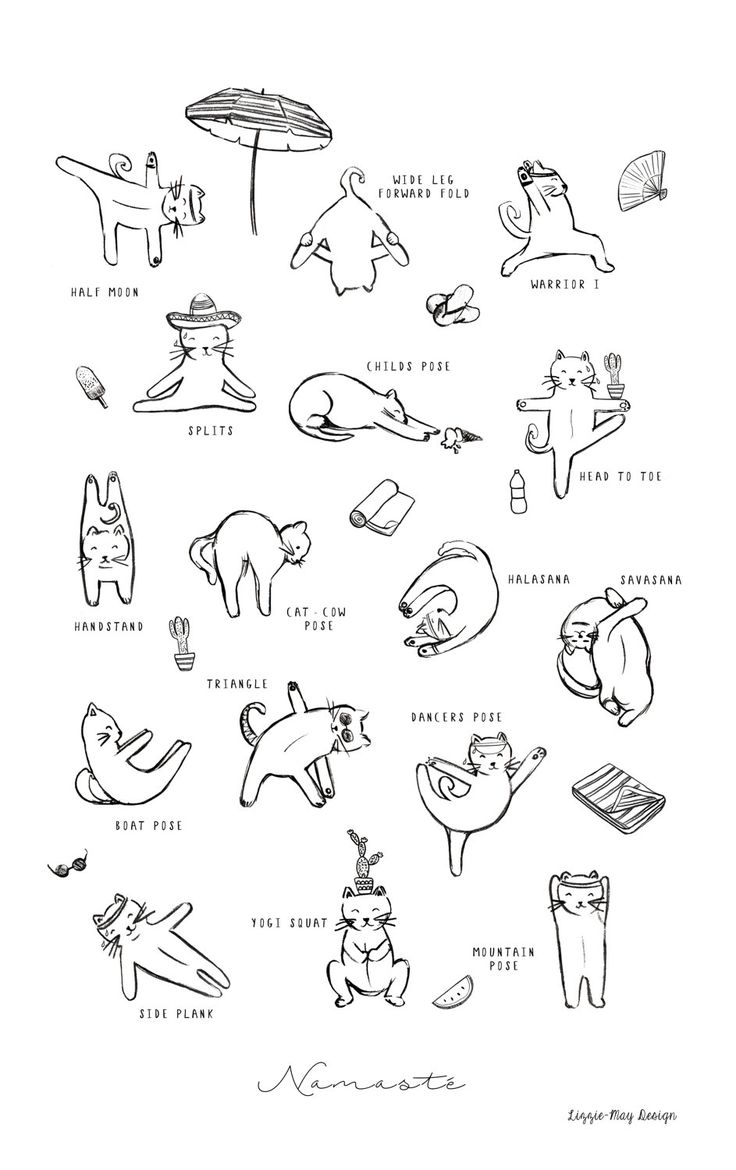 Hot Yoga for Cats Funny Illustration Print by LizzieMayDesign on Etsy