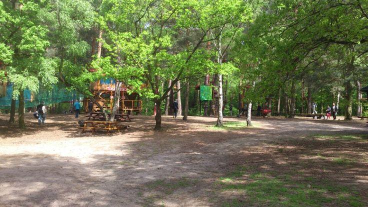 Pyrland Park w Poznań, Wielkopolska