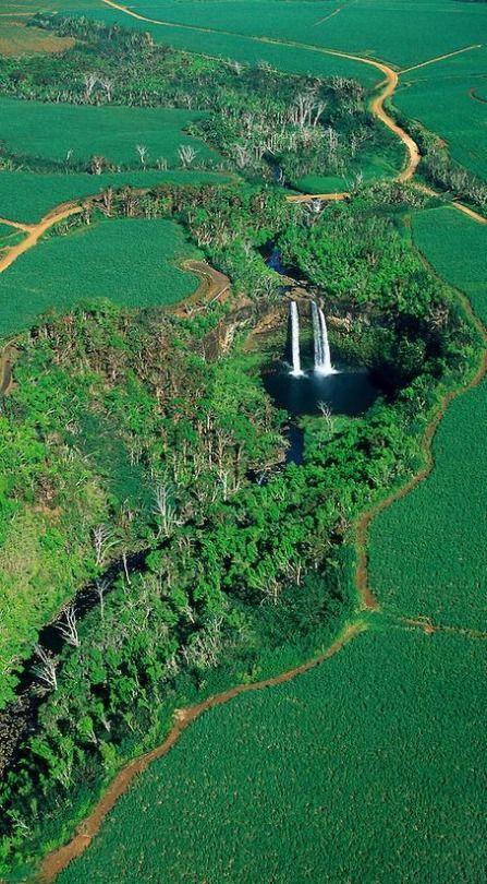 Aerial view of Wailua Falls surrounded by sugar cane fields, Kauai, Hawaii