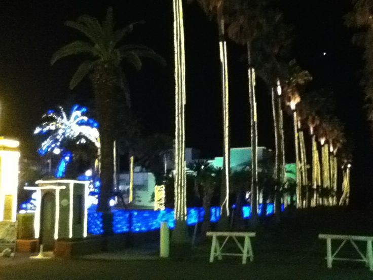 Illumination at Zushi Marina