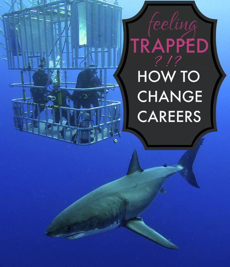 I've changed careers 2x now -- and every time, before I did, I felt trapped in my then-current career.  Check out some of our best tips on how to change careers...