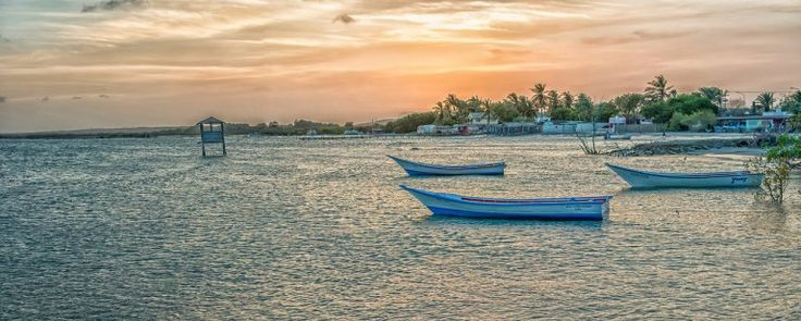 Going with the Orinoco Flow | The Travel Pages
