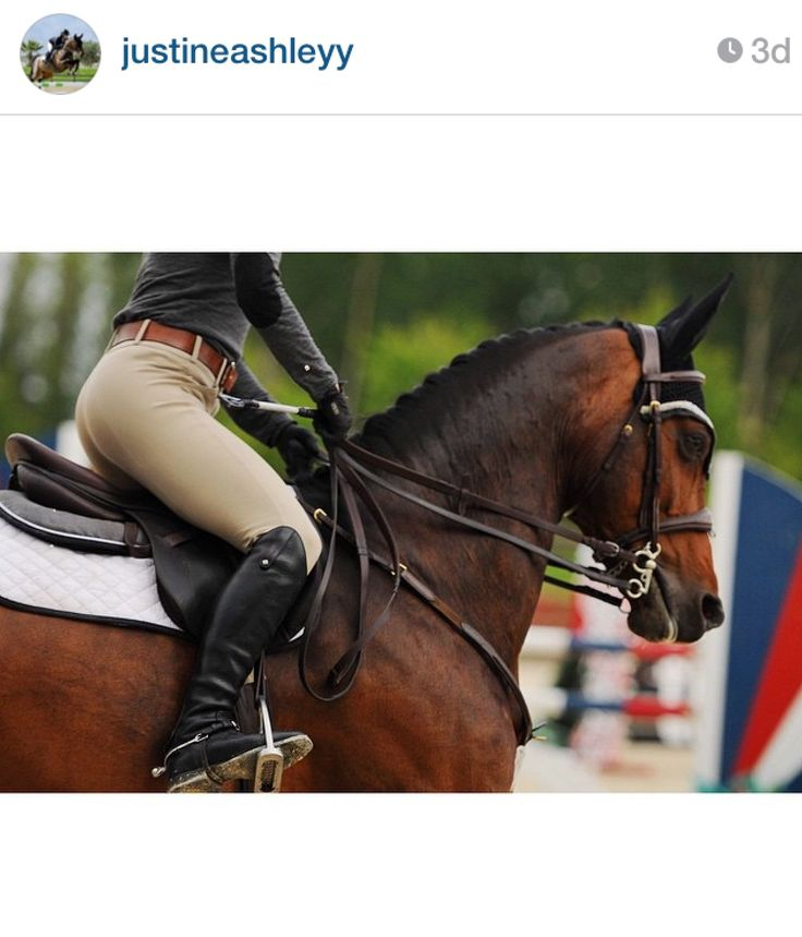 Sarah Bentley Clothing: 81 Best Images About Ogilvy Jump Product Photos On