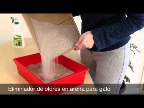 Eliminador de Olores: Uso en arena para gato
