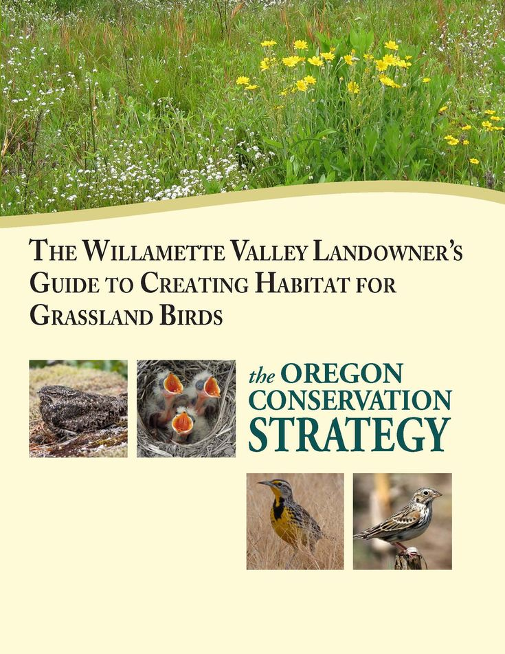 The Willamette Valley landowner's guide to creating habitat for grassland birds, by the Oregon Department of Fish and Wildlife