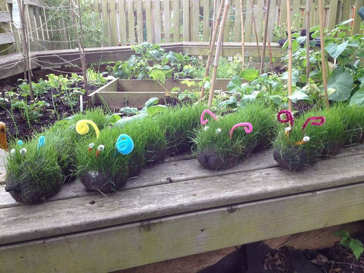 Spring Crafts - these grass head caterpillars are just SO MUCH FUN!!! The kids will love this gardening activity!