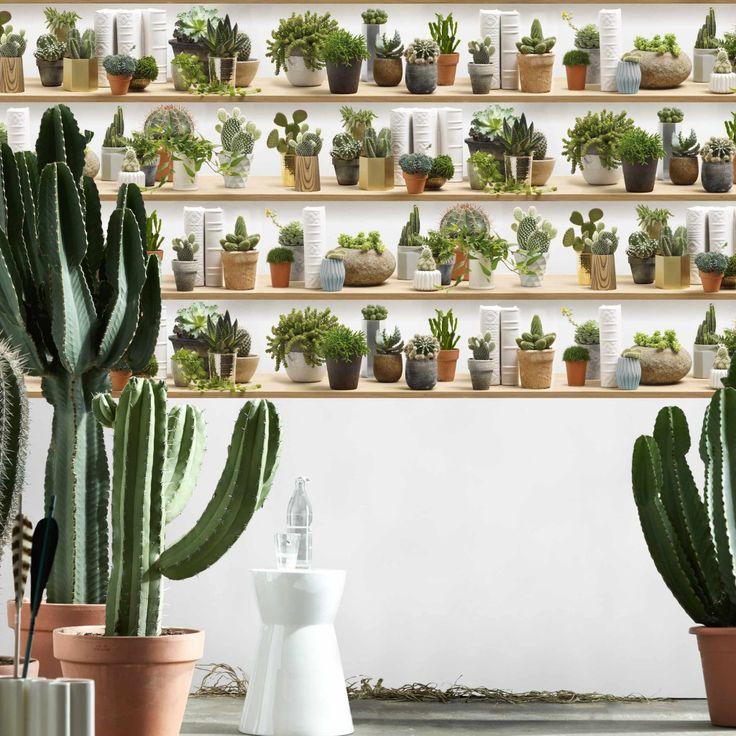 Papier Peint Cactus stylisés sur étagères - Koziel.fr