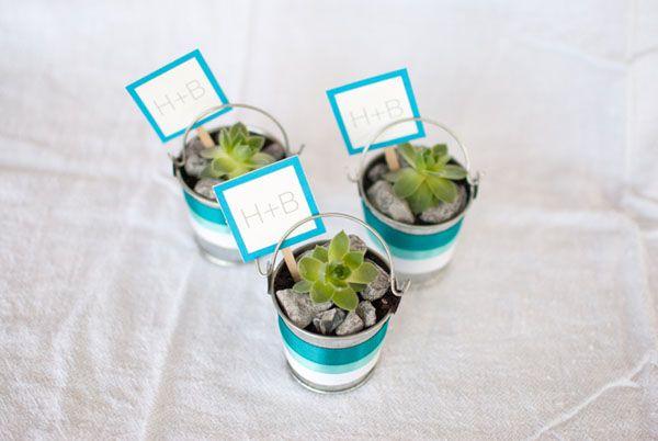 Diy succulents favors
