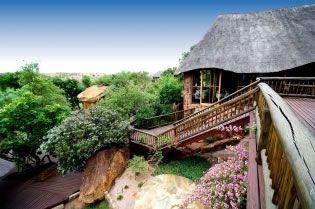 Forever Resorts Isiyala Game Lodge Conference Venue in Middelburg, Mpumalanga