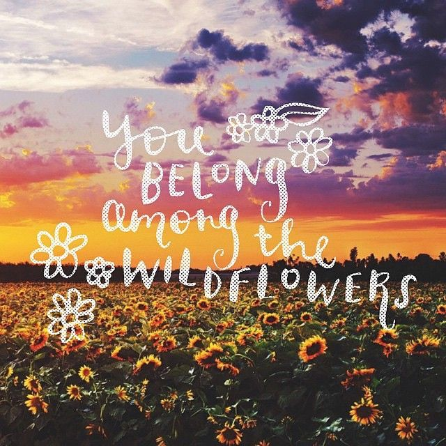 You belong among the wildflowers, You belong in a boat out at sea - Tom Petty #quotes #love quotesalarm.com