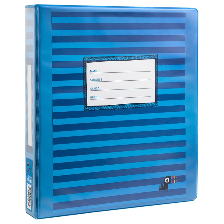 1 Inch Binder with D-Rings - Blue Stripe