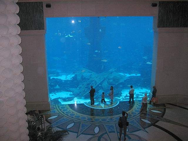 A very big aquarium at Atlantis Hotel in DubaiAquariums Atlantis, Atlantis Resorts, Atlantis Hotels, Dubai Aquariums, Aquariums Hotels, Big Aquariums, Palms Hotels, Atlantis Dubai, Hotels Dubai