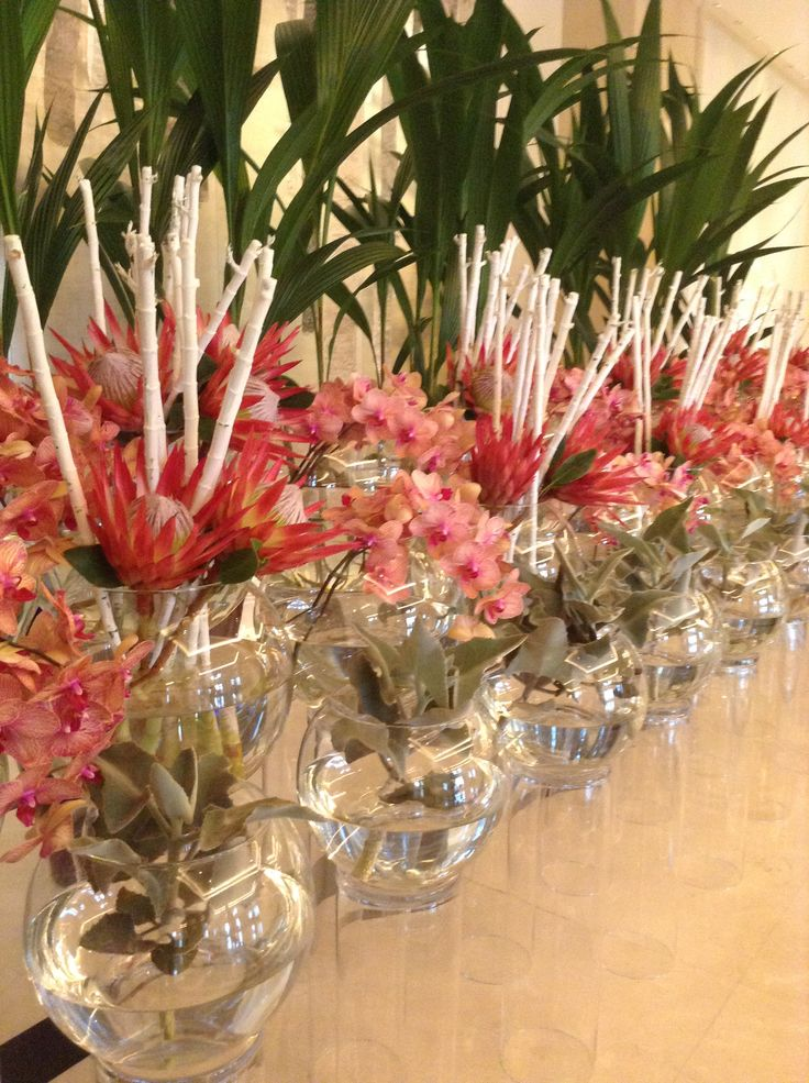 Tropical flower installations
