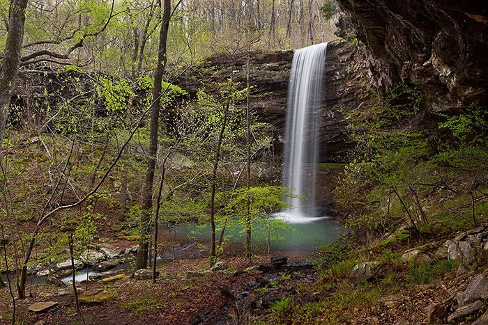 Bowers Hollow Falls is located in the Buffalo National River Wilderness in Arkansas. It cascades 56' into a beautiful green pool surrounded by Umbrella Magnolias and ferns.