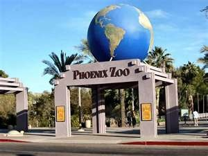 Phoenix Zoo, Phoenix, Arizona - this is a great publicly owned zoo that is improving all the time and so each visit is a new experience.  We have been going to visit frequently from 1973 to present day - it is too big to do in just one day and really see the animals at their best, so we pick an area and spend all our time there.