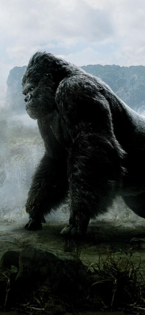 Best Wallpaper For Iphone X King Kong Movie Sp 11252436 4k Hd
