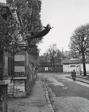 Yves Klein, Harry Shunk, Janos Kender: Leap into the Void (1992.5112) | Heilbrunn Timeline of Art History | The Metropolitan Museum of Art