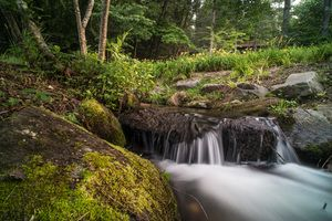 Zack Smith Photography North Carolina Brevard School of Music Center Nature…