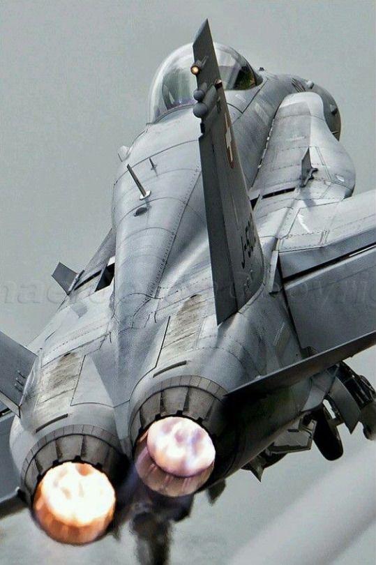 McDonnell Douglas (now Boeing) F/A-18 Hornet