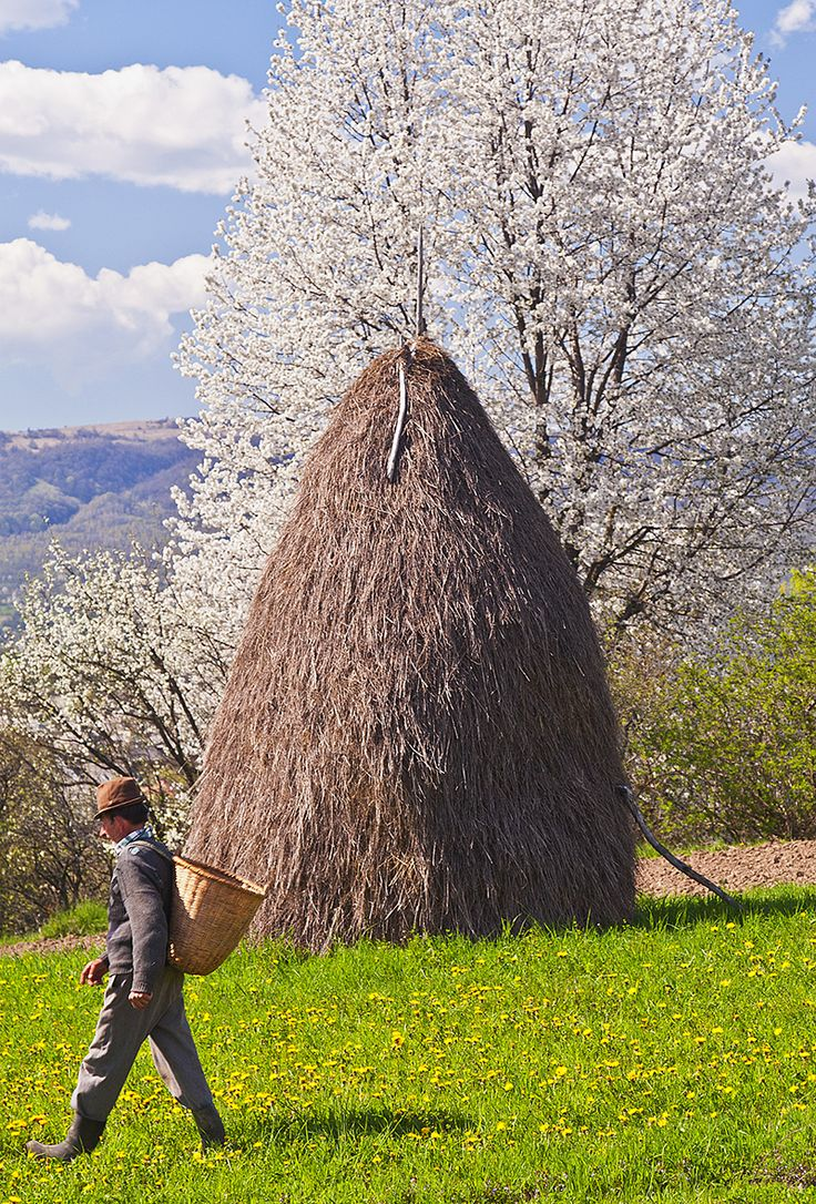 Good Morning from Breb, on a shinny day of #spring. #hay #countryside #travel http://buff.ly/1Efd4XL