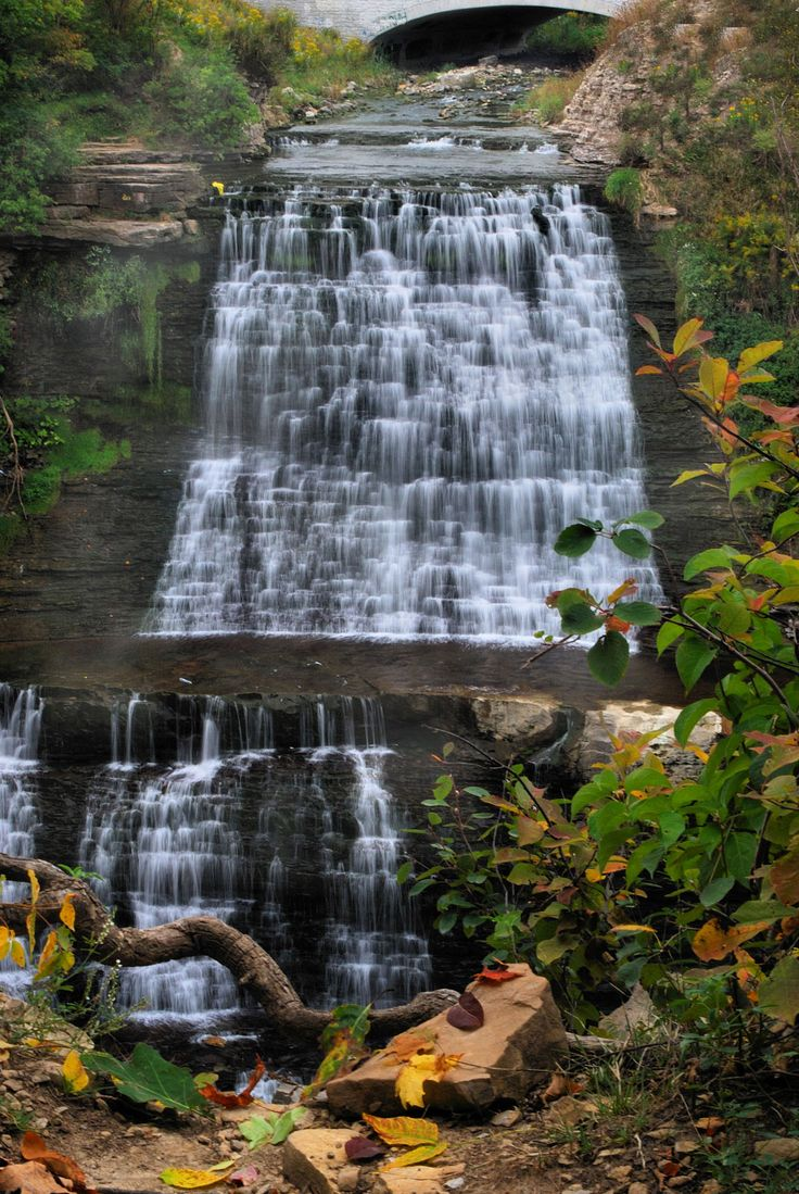 Albion Falls is a Complex Classic Cascade waterfall 19 metres in height. Located at the southernmost tip of King's Forest Park in Hamilton, its source is Red Hill Creek. Albion Falls enjoys year-round flow. Albion Falls is the premier waterfall in Hamilton's east end. Two viewing platforms were constructed by the City of Hamilton …