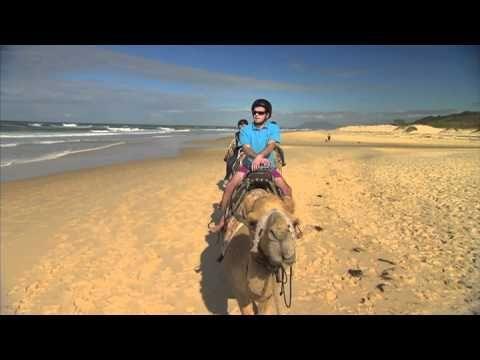 Port Macquarie safari train - Top Tourist Parks - Discover Downunder - YouTube