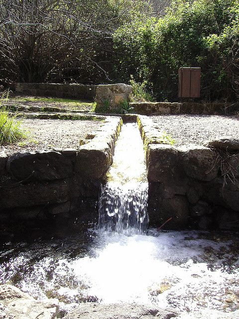Hermon Springs, Israel. Nature Park in Israel, springs coming all the way from Mount Hermon.
