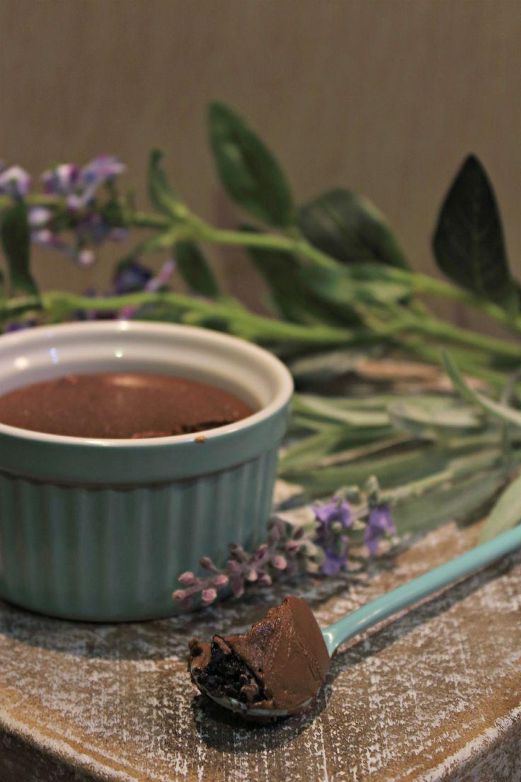 chocolate junked