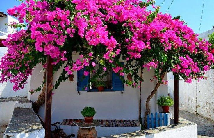 Sifnos island | Smile Greek
