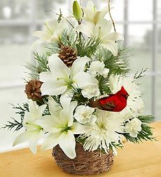 Wintertime Birds Nest of Flowers - Large. EXCLUSIVE Invite the serenity and beauty of winter into their home with this hand-crafted mix of lilies, mums, carnations, and assorted evergreens. Artistically designed in a charming bird's nest basket and accented with birch branches, pinecones and a festive bird pick. Nature-inspired arrangement of the freshest lilies, mums, mini carnations and assorted Christmas greens, beautifully accented with pinecones, birch branches and a charming bird pick…