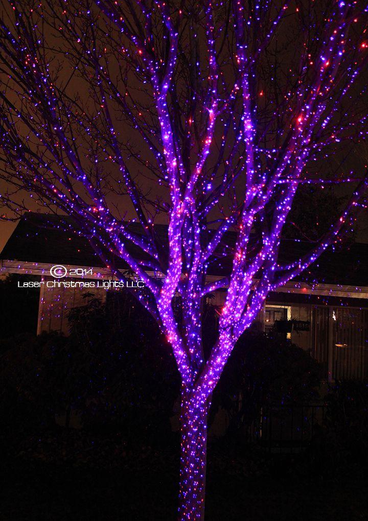 laser christmas lights, outdoor laser lights SO pretty