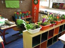 Projecten. Tuincentrum in de klas.