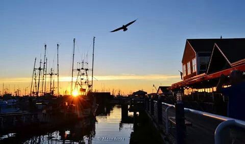 Late September #sunset on Fisherman's Wharf in Steveston, Richmond, B.C.