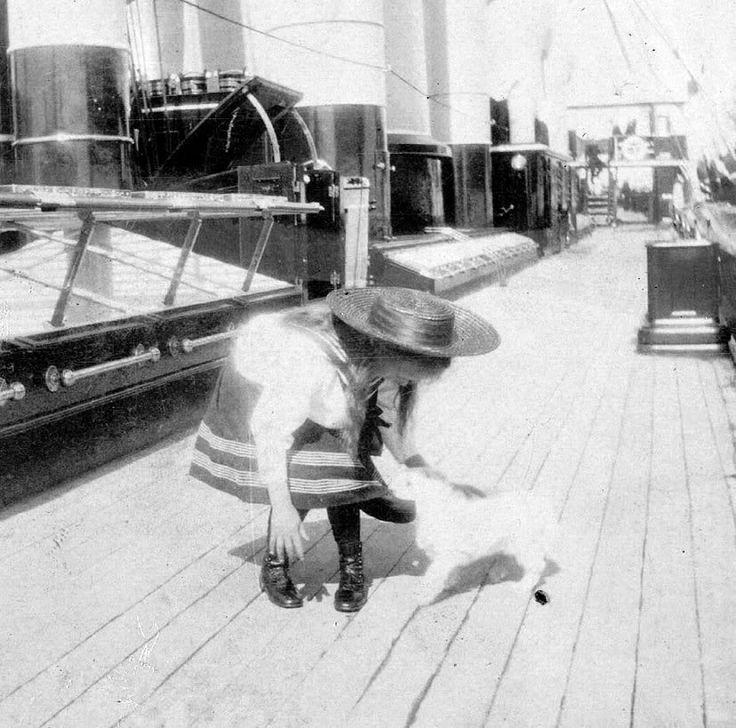 Anastasia-cat, 1908, Livadia, aas photo 5f2f24f6.jpg
