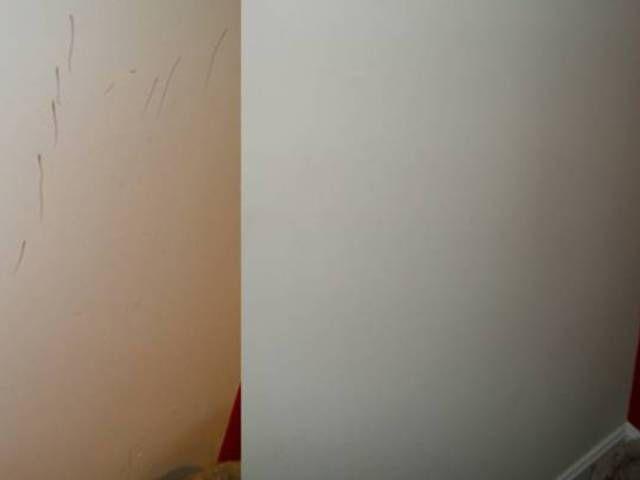 Piszkosak a falaid, de nincs pénzed festésre? Így tisztítsd meg a falakat házilag, akár a színeseket is! A mi lakásunk már csillog!